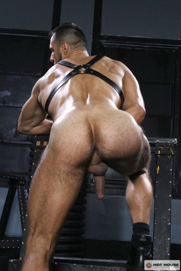 Hot gay teachers naked