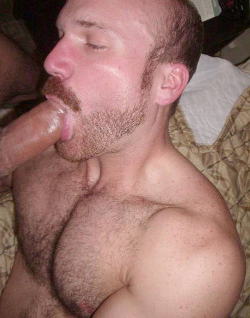You Just Cant Stop The Gay Sex 40 Images  Daily Squirt