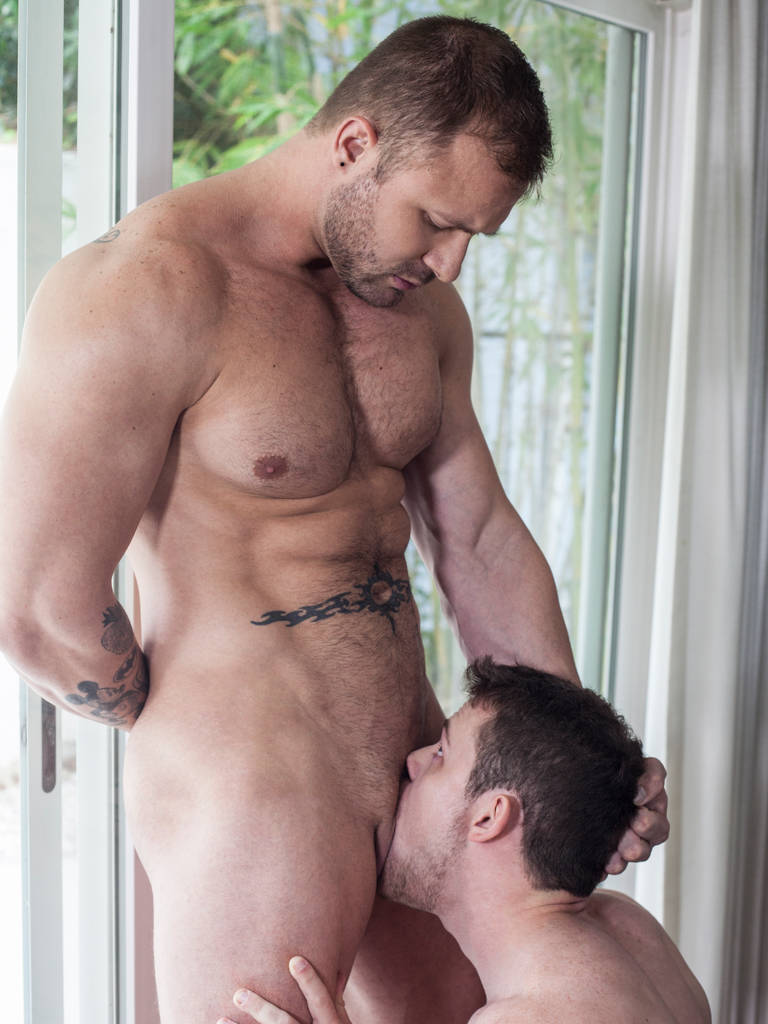 Austin Wolf Bottominggay Porn hungry like the wolves! who would you choose? austin wolf or
