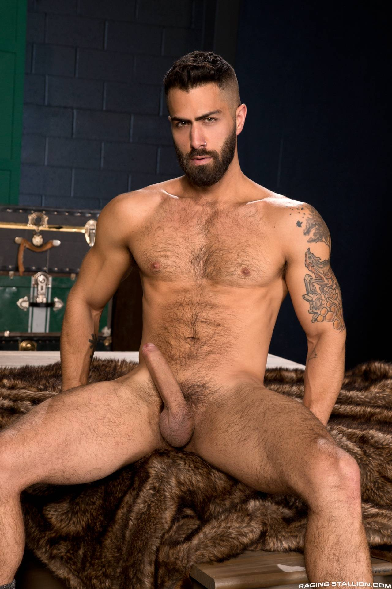 Adam Ramzi Porn Masters who would you choose? adam ramzi or calab king?   daily squirt